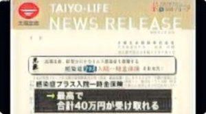 中山朝香 Wiki プロフィール ミスワールドジャパン 経歴